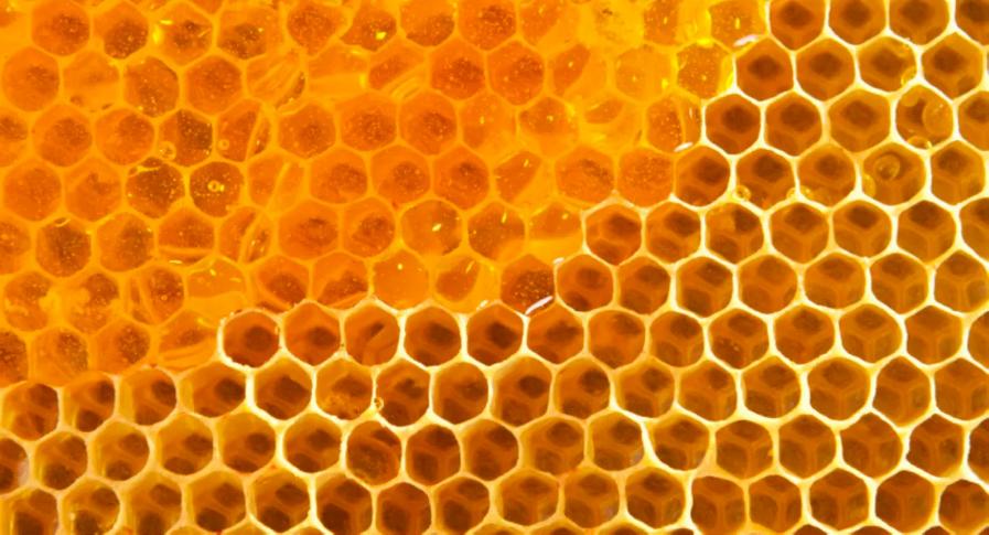 Honey Pancakes Recipe